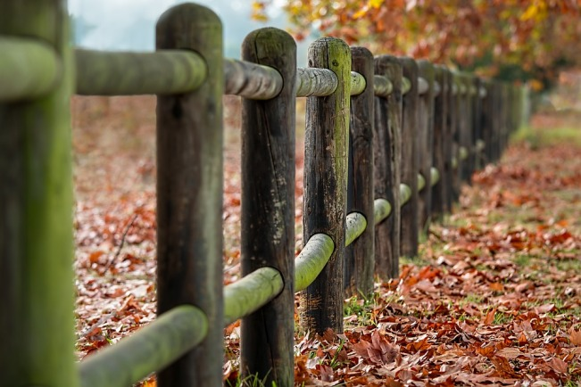 fence-posts-2331414_960_720.jpg