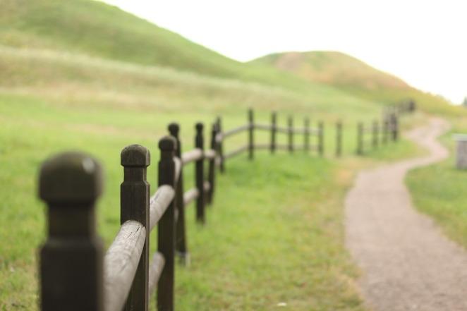 landscape-398500_960_720.jpg