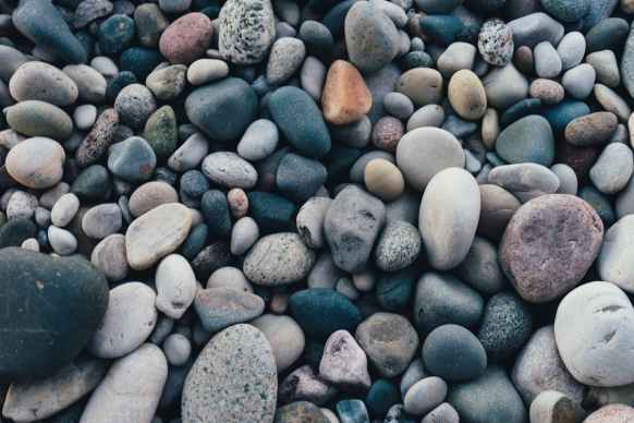 pexels-photo-1029604.jpeg