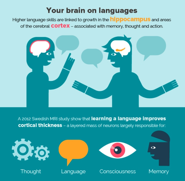 learning-languages 2.jpg